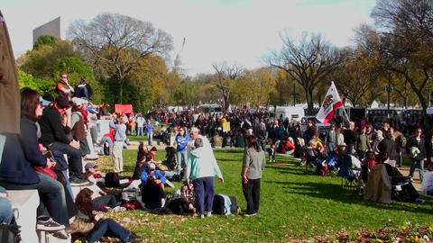 Huge crowds of protestors gather on the mall in... Stock Video Footage