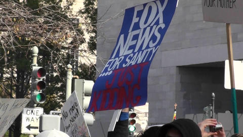 A sign at a rally says Fox News For Sanity Just Kidding Stock Video Footage