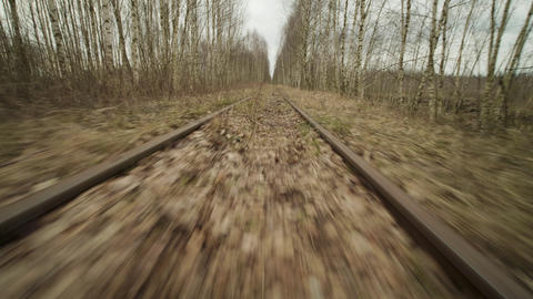 Abandoned narrow gauge railway in the forest, autumn day, low angle view Live Action