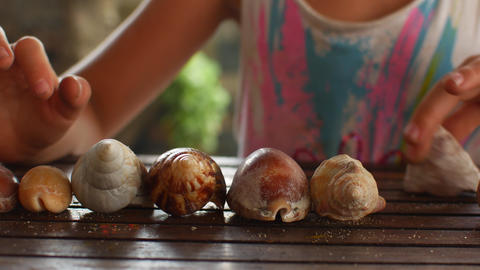 Preschooler girl playing with seashells Live Action