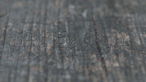 Old gray weathered wooden board dolly shot with shallow focus Live Action