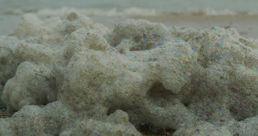 Contaminated sea foam on the shore. Pollution by toxic chemicals, dirty sea Live Action