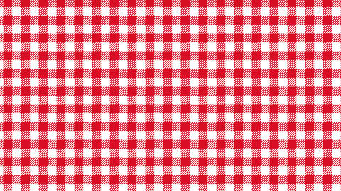 Gingham check pattern of red. Seamless loop Animation