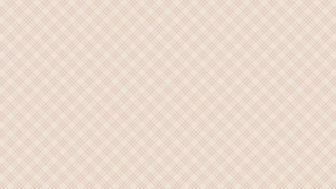 Tartan check diagonal pattern of brown. Seamless loop CG動画