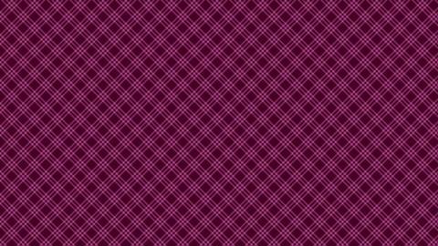 Tartan check diagonal pattern of pink. Seamless loop CG動画