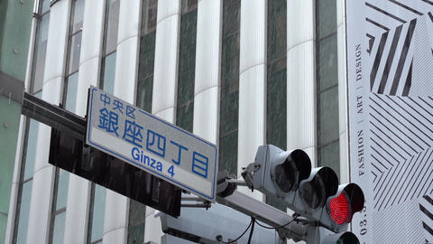 Traffic light on snowy day. Tokyo, Ginza GIF