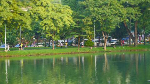 Morning scene in Lumpini Park, Bangkok Footage