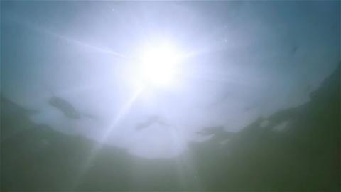 Underwater background Footage