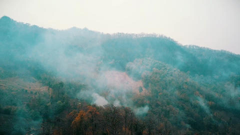 Smog of forest fires. Deforestation and Climate crisis. Toxic haze from Live Action