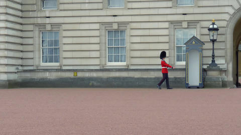 British Guard on duty. Slow motion, video footage Live Action