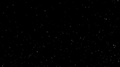 Dust Particles Moving Up on Black Background Looped GIF