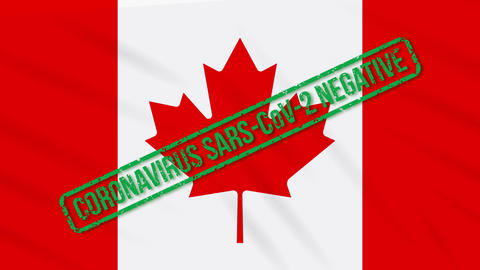 Canada swaying flag with green stamp of freedom from coronavirus, loop Animation