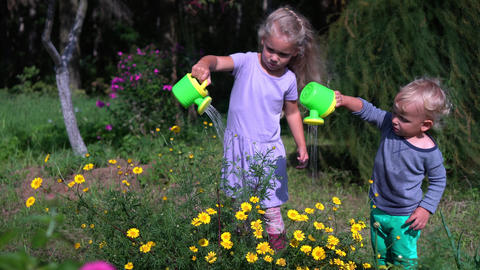 Cute children brother and sister water flowers with small watering can in garden Live Action