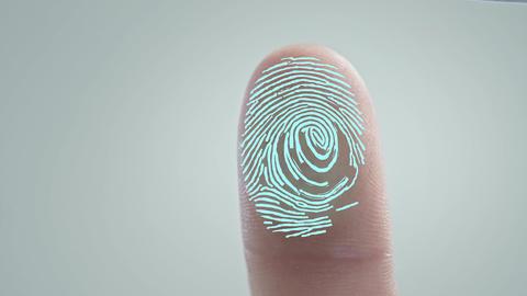 Digital processing of biometric fingerprint scanner. Security scanning of Live Action