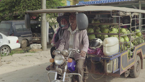 Daily life in Cambodia. Asia. A man transports coconuts Live Action
