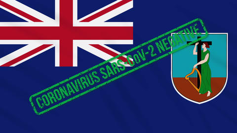 Montserrat swaying flag with green stamp of freedom from coronavirus, loop Animation