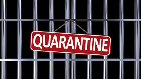Iron door quarantine chromium GIF