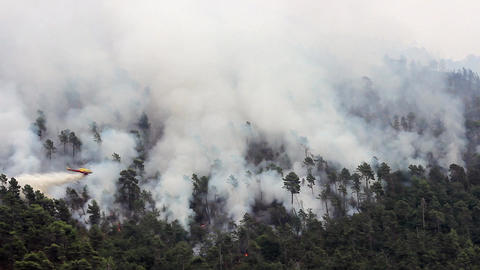 Helicopter Drops Water On Forest Fire Footage