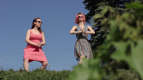 Girl girls dance in the park dance Big Apple. Kyiv. Ukraine Live Action