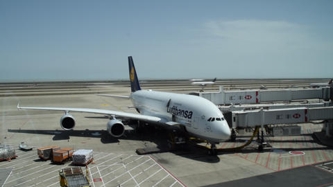 TIME LAPSE: Lufthansa Airplane in Bluesky weather sunshine with planes taking Live Action