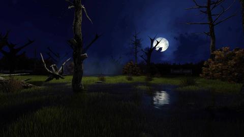 Fantastic big moon above creepy swamp Footage
