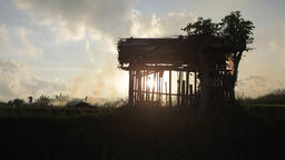 Silhouettes of farmer setting fire of straw stubble in Ubud Bali during sunset Footage