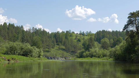 Forest on the banks, the Urals, Russia Footage