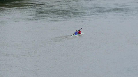 Rower paddling down the shallow waters of a river bordered by dense vegetation 4 Footage