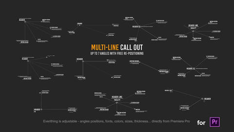 Multi Line Call outs package // MOGRT // Premiere Pro Motion Graphics Template