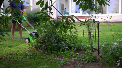 Male gardener mowing lawn between trees and flowers in garden Live Action