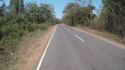 travelling by india on bike, travel shot on go pro, pov, jungle road Live Action