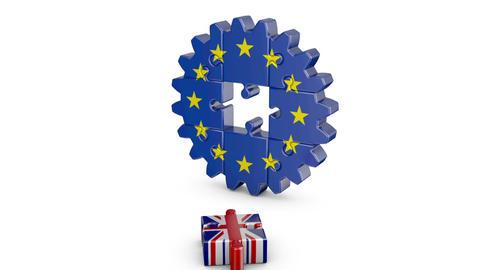 Puzzle EU and UK Animation