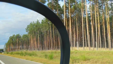 Car driving at high speed, view of roadside landscape from passenger seat Footage