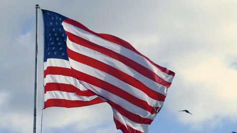 USA flag waving with a cloudy blue sky Live Action