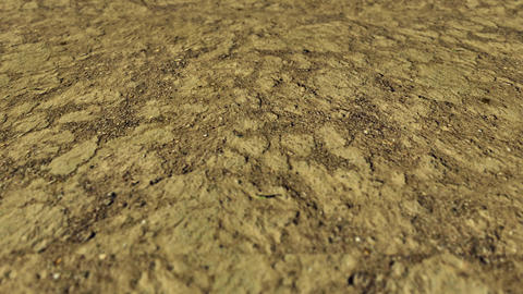 Desert texture Animation