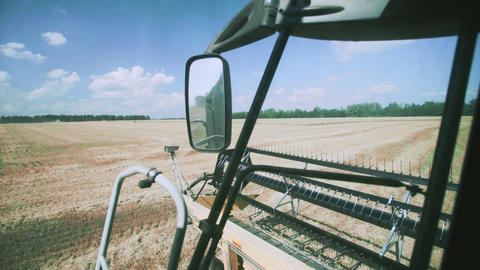 View from a combine harvester header harvesting of wheat field Live Action