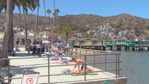 The beachfront at Catalina Island resort in Southe Stock Video Footage