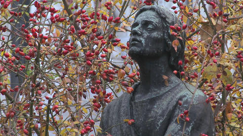 A statue of an artist appears to be thinking or co Stock Video Footage