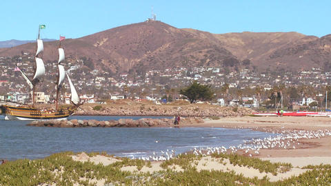 A tall master schooner sails into Ventura harbor Footage