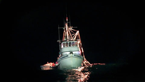 A fishing boat is illuminated on the water at night Stock Video Footage
