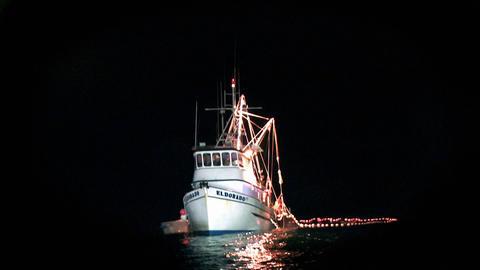 A fishing boat is illuminated on the water at night Footage