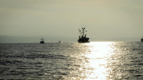 Boats move through the water as the sun starts to set Stock Video Footage