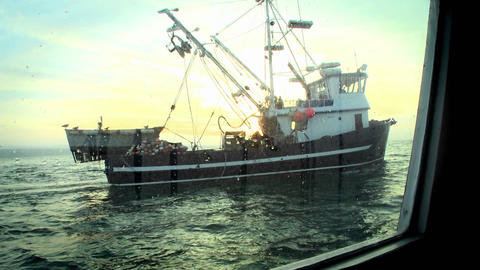 A fish-cutter navigates in open waters Footage