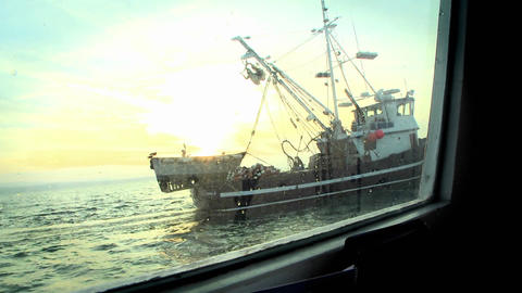 A fish-cutter navigates in open waters Stock Video Footage