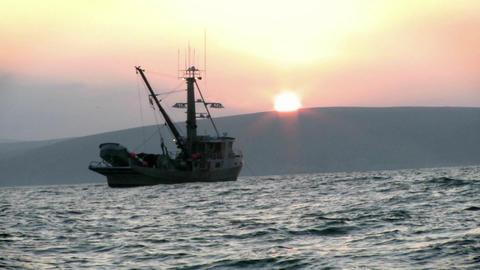 A fishing vessel navigates just off shore Footage