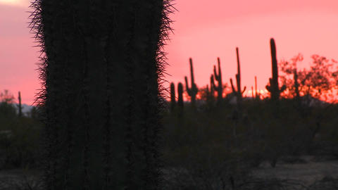 The sun sets upon a desert area Stock Video Footage