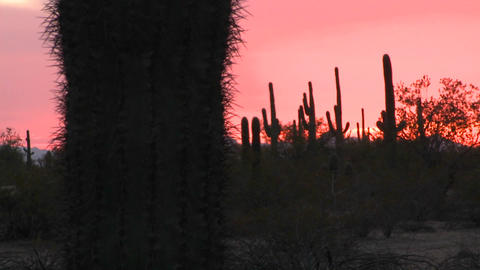 The sun sets upon a desert area Footage