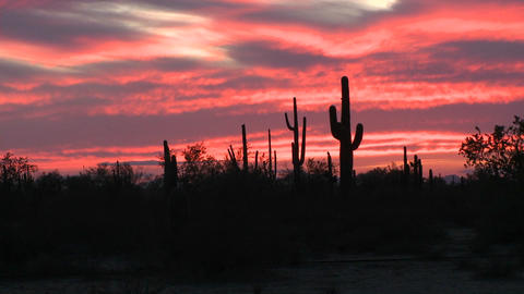 The sunsets on the horizon of a desert landscape Stock Video Footage