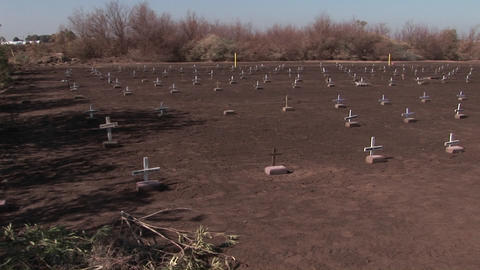 Graves are marked with small white crosses Footage