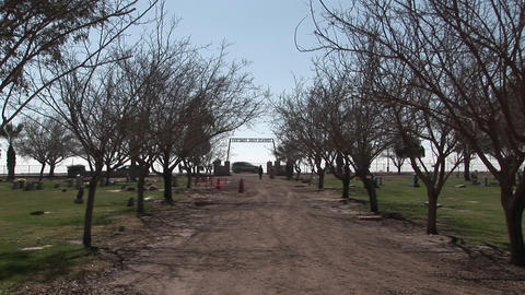 A person takes a stroll along a tree-lined dirt road of a... Stock Video Footage